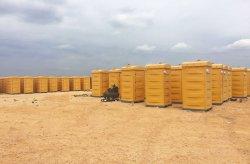 Verplaatsbare Polyethyleentoiletten